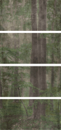 PF60001876