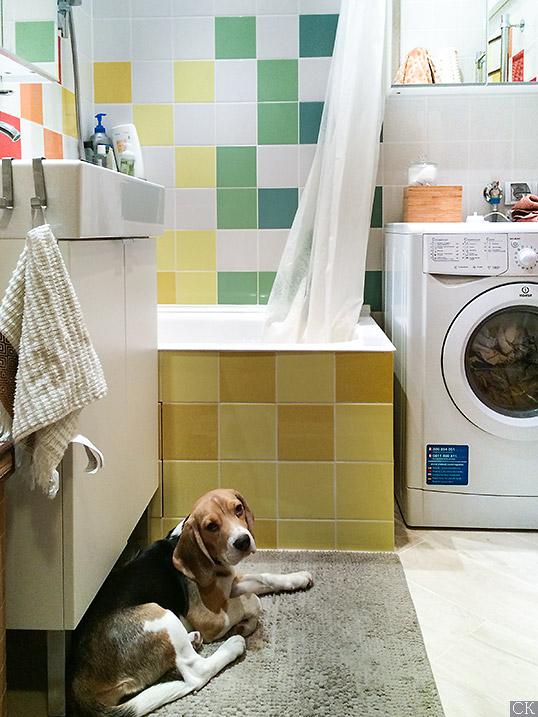 Желтая плитка для ванной, 15х15 см